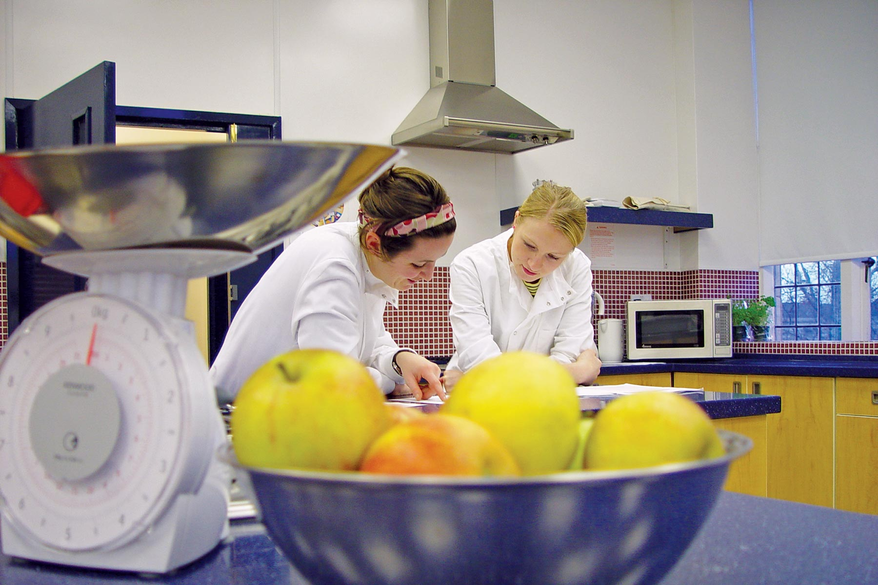 International Business Degree >> Functional Foods Research Centre | Clinical Sciences and ...