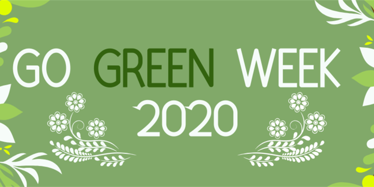 13 Ways to Go Green this Christmas | RG Magazines | Go Green