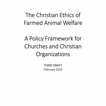 image of front cover of Policy Framework