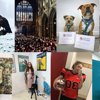 A collection of photos of students and animals at the University of Chester