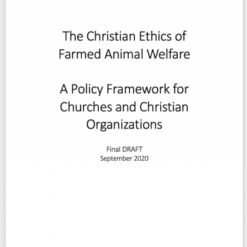 Policy Framework final draft cover