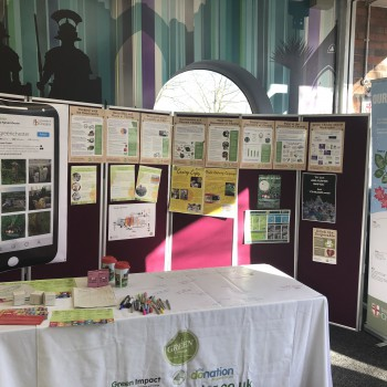 Go Green stall at Seaborne Library