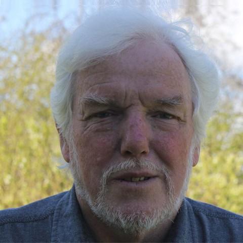 Professor Robert Silvester