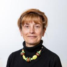 Professor Ros Bramwell