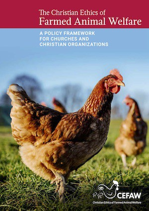 Cover of Policy Framework, showing free range chickens