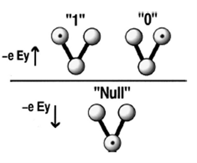 A cross section for a half - cell for a molecular QCA