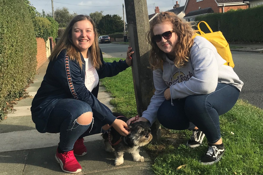 Student volunteers take a dog for a walk