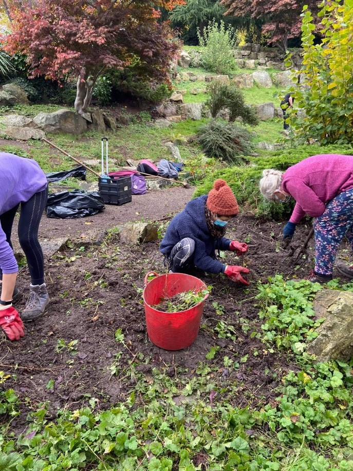 Helping out in Grosvenor Park, a local green space